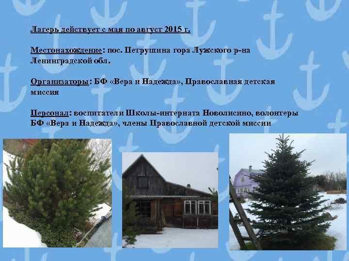 Лагерь действует с мая по август 2015 г. Местонахождение: пос. Петрушина гора Лужского р-на