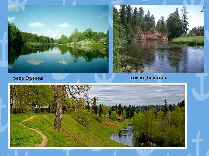 река Оредеж озеро Дарагань