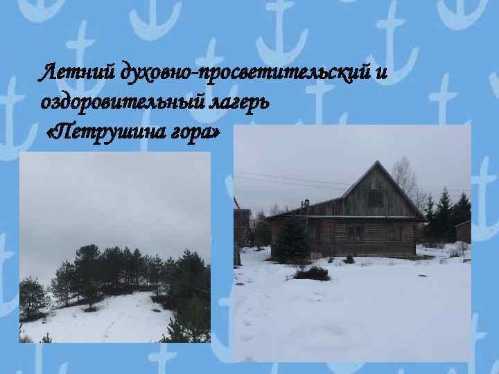 Летний духовно-просветительский и оздоровительный лагерь «Петрушина гора»