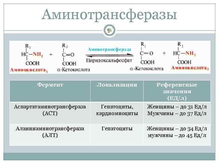 Аминотрансферазы Фермент Локализация Референсные значения (ЕД/л) Аспартатаминотрансфераза (АСТ) Гепатоциты, кардиомиоциты Женщины – до 31