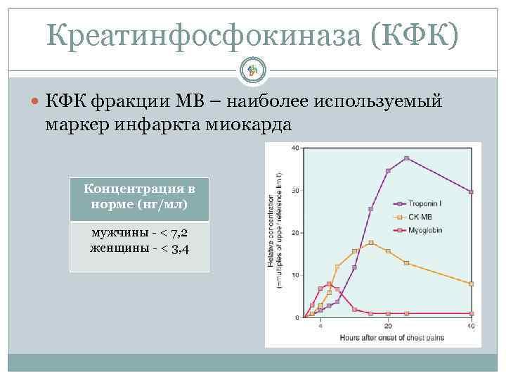 Креатинфосфокиназа (КФК) КФК фракции МВ – наиболее используемый маркер инфаркта миокарда Концентрация в норме