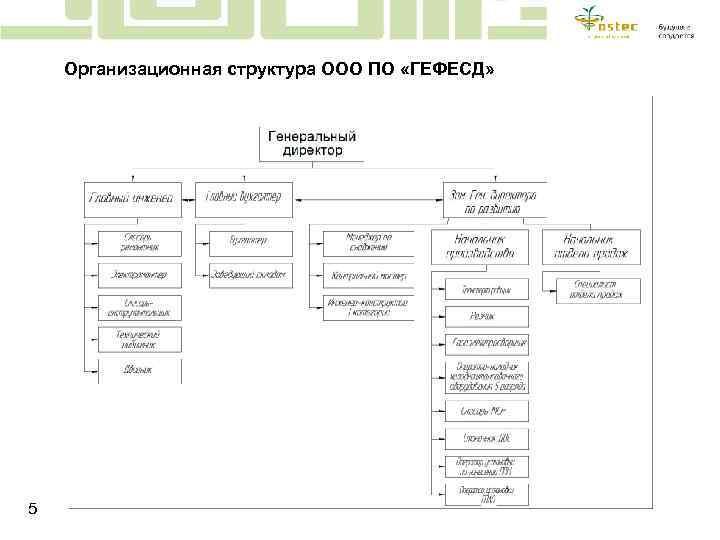Организационная структура ООО ПО «ГЕФЕСД» 5