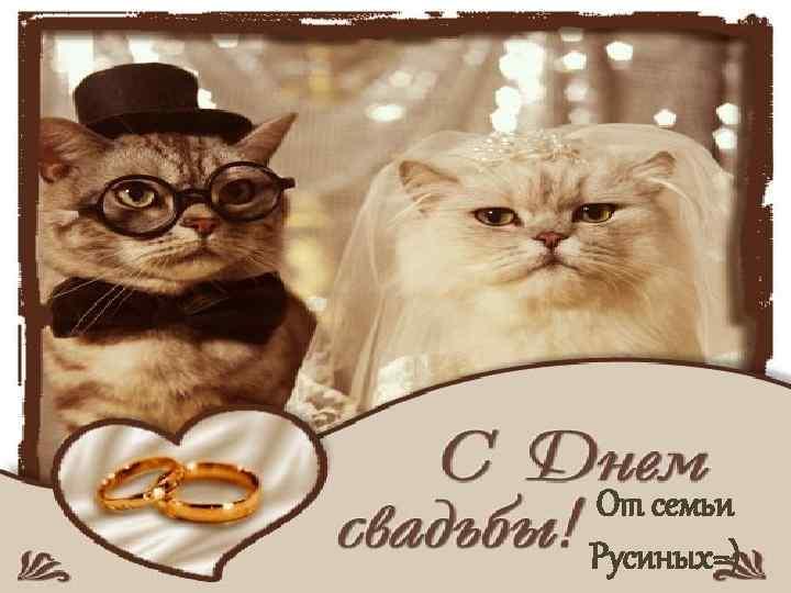 От семьи Русиных=)