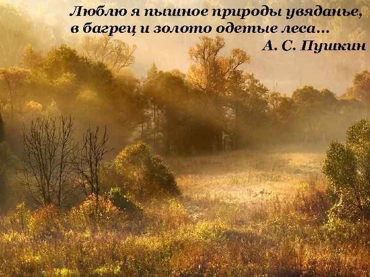 Люблю я пышное природы увяданье, в багрец и золото одетые леса. . . А.