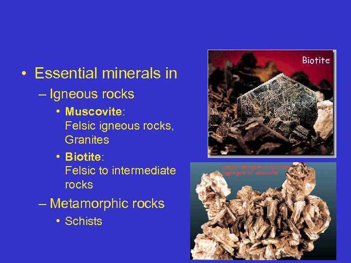 Biotite • Essential minerals in – Igneous rocks • Muscovite: Felsic igneous rocks, Granites