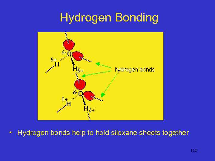 Hydrogen Bonding • Hydrogen bonds help to hold siloxane sheets together 112