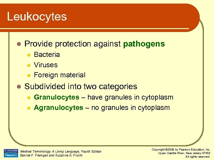 Leukocytes l Provide protection against pathogens l l Bacteria Viruses Foreign material Subdivided into