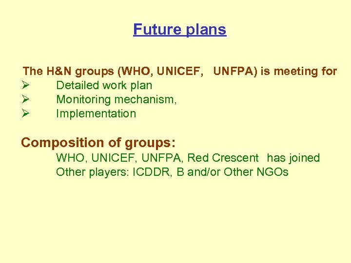 Future plans The H&N groups (WHO, UNICEF, UNFPA) is meeting for Ø Detailed work