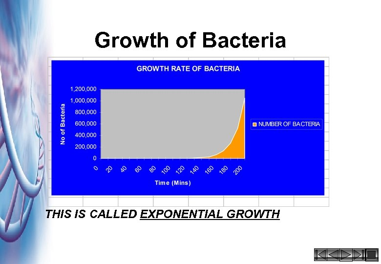 Growth of Bacteria THIS IS CALLED EXPONENTIAL GROWTH HACCP 2000