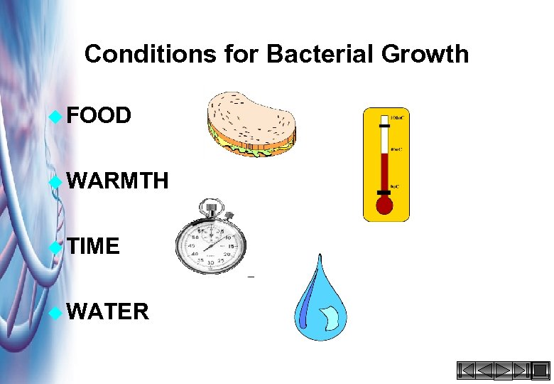 Conditions for Bacterial Growth u FOOD u WARMTH u TIME u WATER HACCP 2000