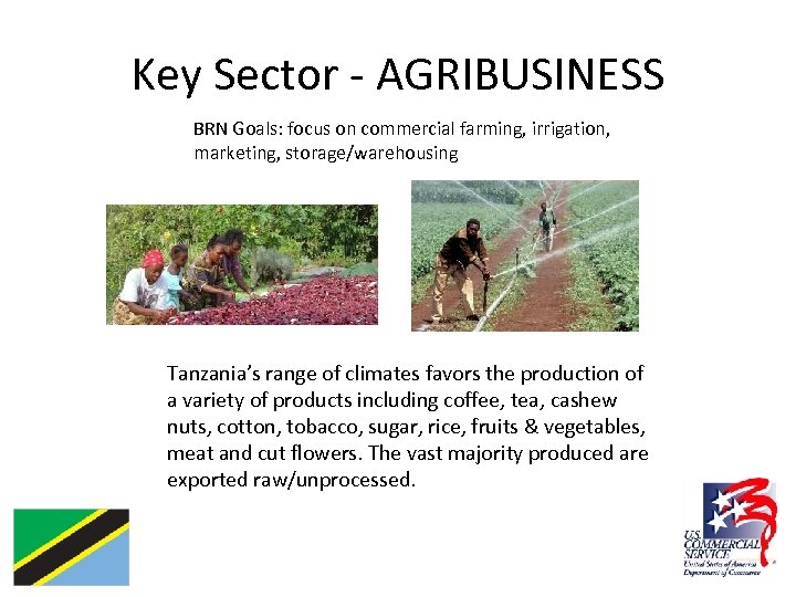 Key Sector - AGRIBUSINESS BRN Goals: focus on commercial farming, irrigation, marketing, storage/warehousing Tanzania's