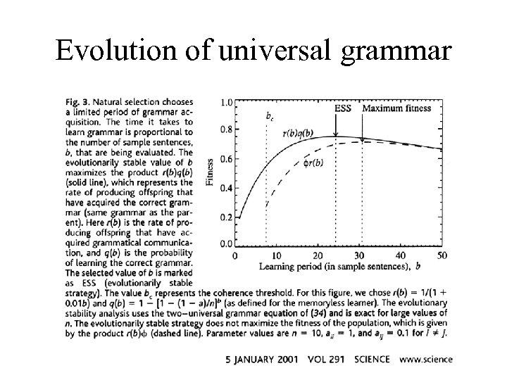 Evolution of universal grammar