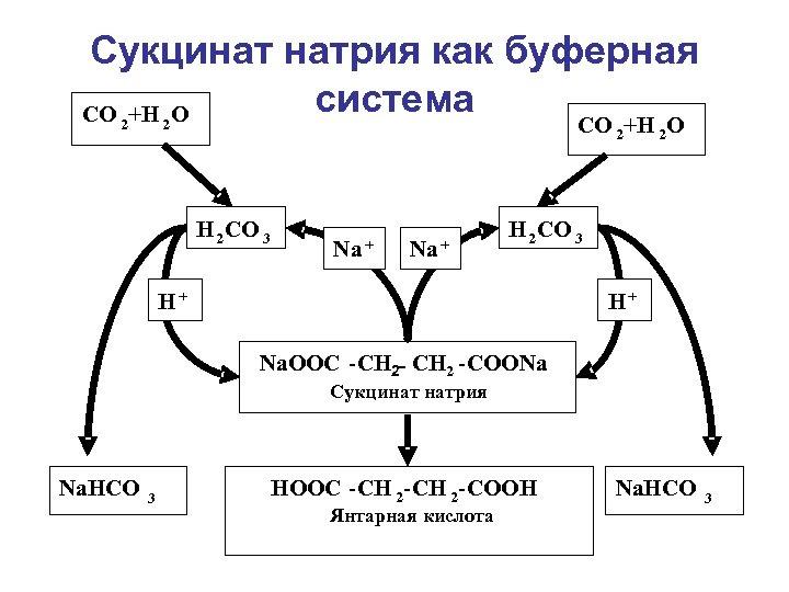 Сукцинат натрия как буферная система CO +H O 2 CO 2+H 2 O 2