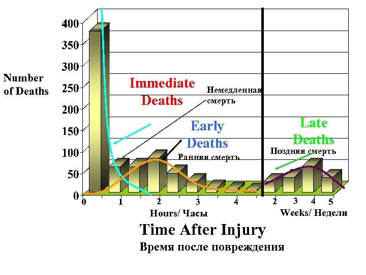 Number of Deaths Immediate Deaths Немедленная смерть Late Deaths Early Deaths Ранняя смерть 0