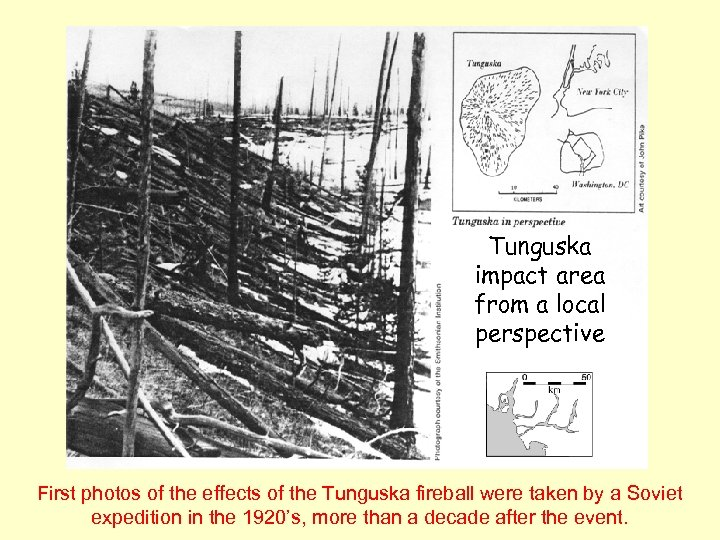 Tunguska impact area from a local perspective First photos of the effects of the