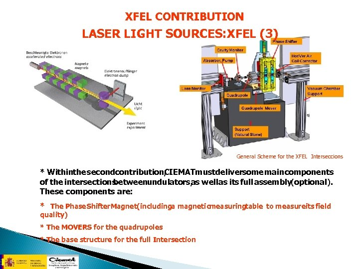XFEL CONTRIBUTION LASER LIGHT SOURCES: XFEL (3) General Scheme for the XFEL Interseccions *