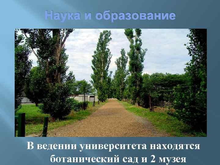Наука и образование В ведении университета находятся ботанический сад и 2 музея