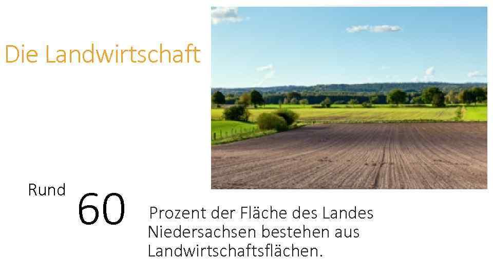 Die Landwirtschaft Rund 60 Prozent der Fläche des Landes Niedersachsen bestehen aus Landwirtschaftsflächen.