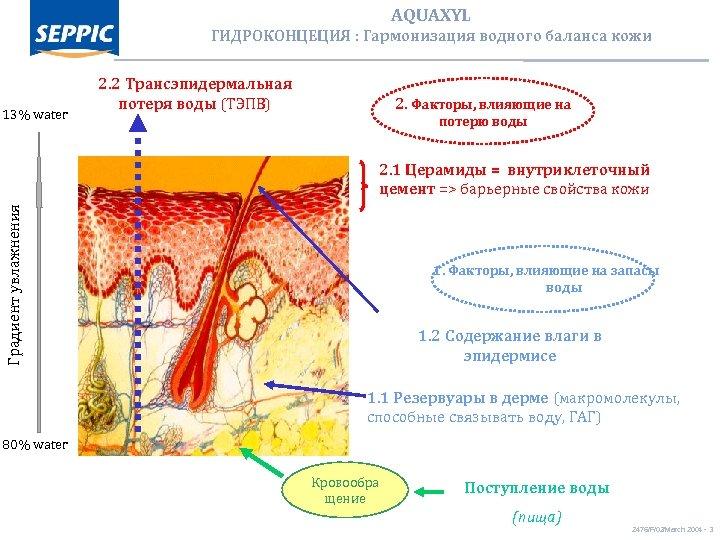 AQUAXYL ГИДРОКОНЦЕЦИЯ : Гармонизация водного баланса кожи 13% water 2. 2 Трансэпидермальная потеря воды