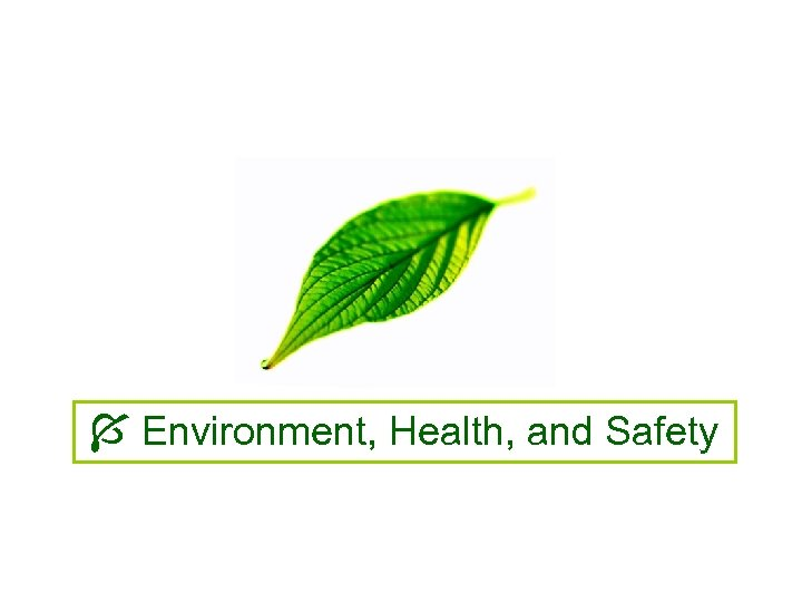 Environment, Health, and Safety