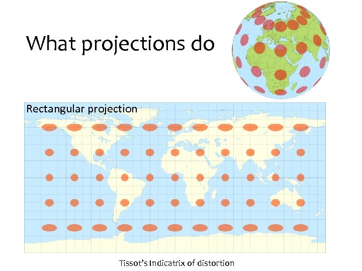 What projections do Rectangular projection Tissot's Indicatrix of distortion