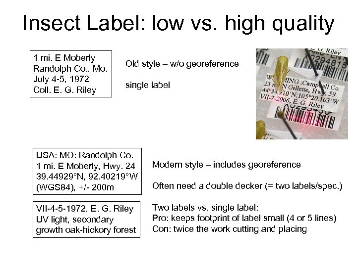 Insect Label: low vs. high quality 1 mi. E Moberly Randolph Co. , Mo.
