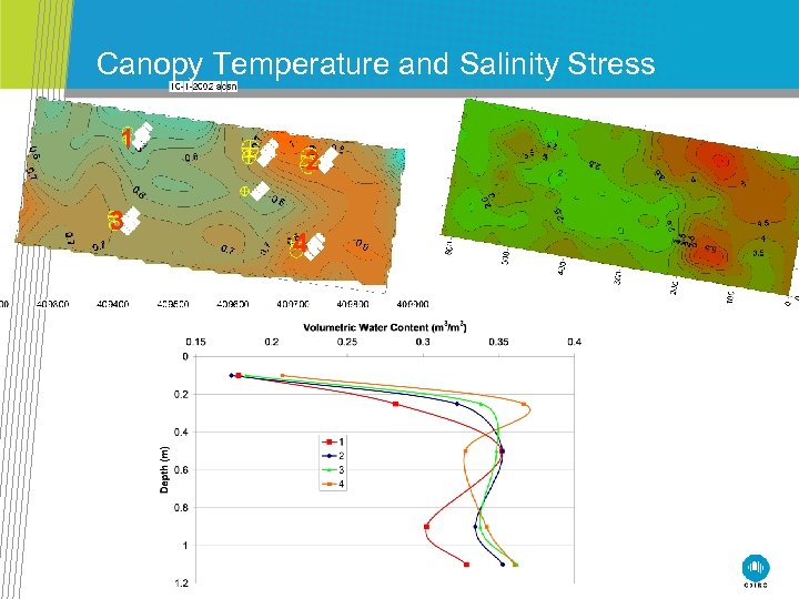 Canopy Temperature and Salinity Stress 1 3 2 4