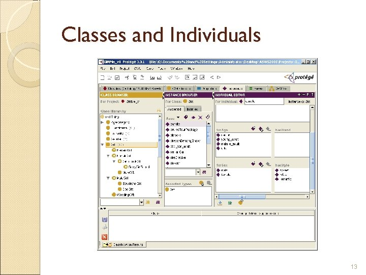 Classes and Individuals 13