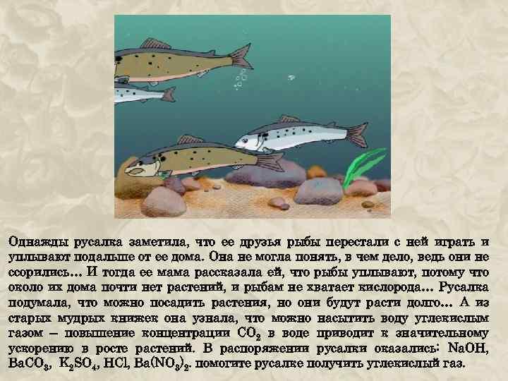 Однажды русалка заметила, что ее друзья рыбы перестали с ней играть и уплывают подальше