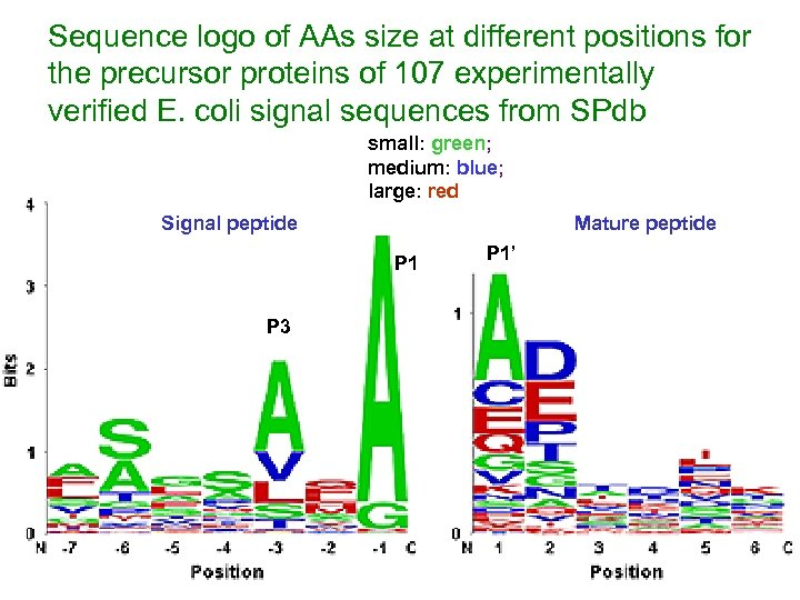 Sequence logo of AAs size at different positions for the precursor proteins of 107