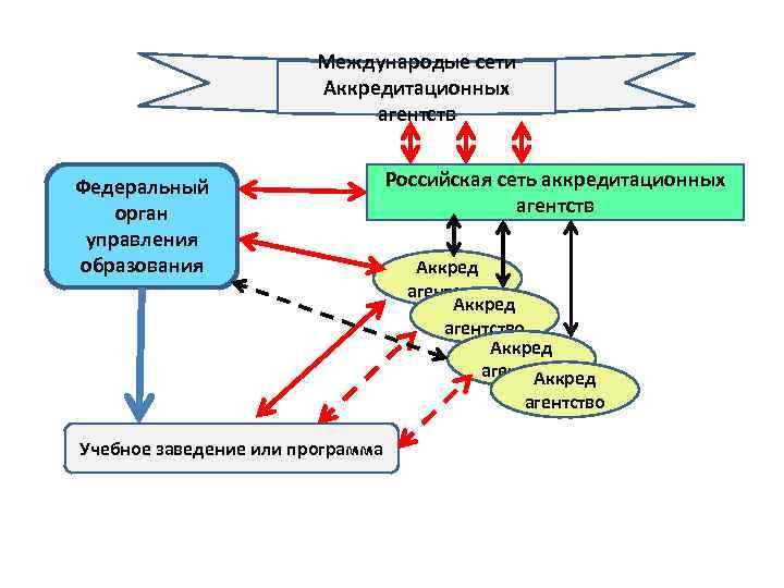 Международые сети Аккредитационных агентств Федеральный орган управления образования Российская сеть аккредитационных агентств Аккред агентство