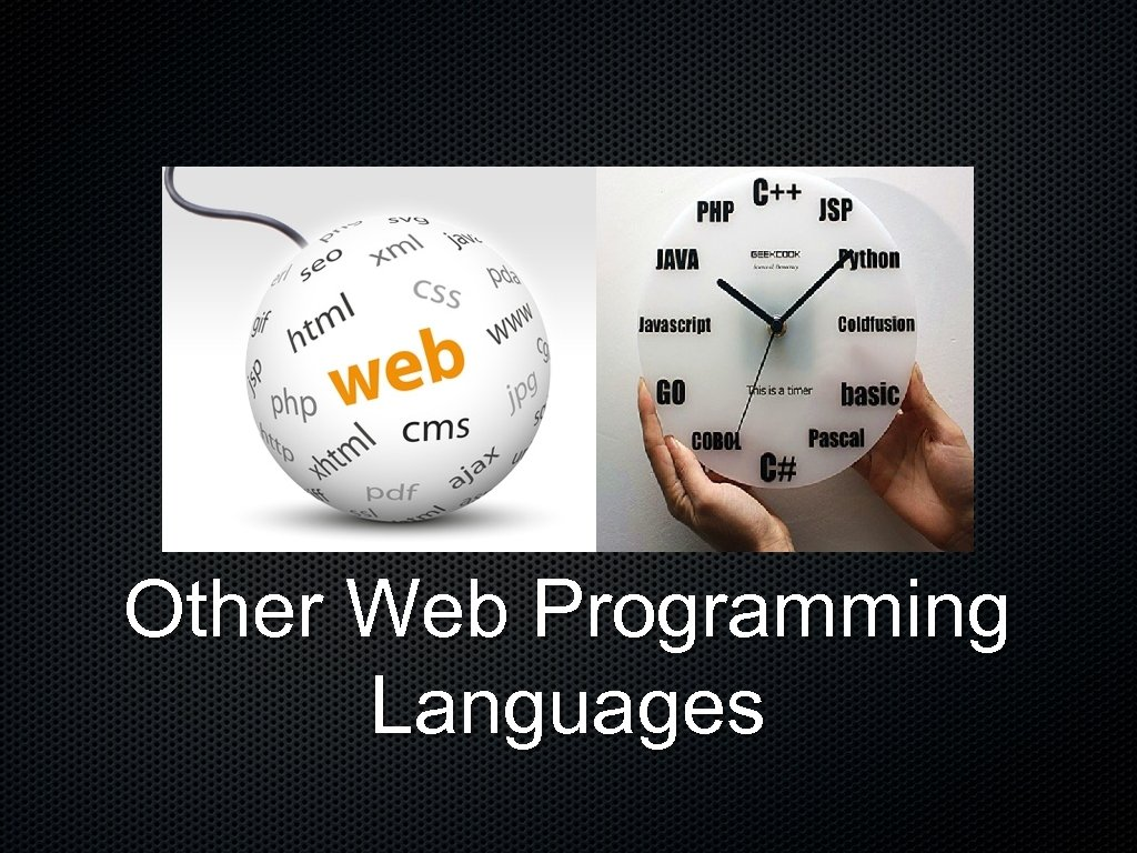 Other Web Programming Languages