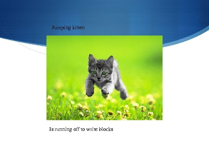 Jumping kitten Is running off to write blocks