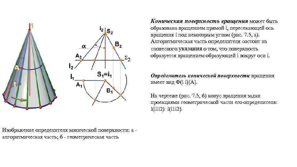 Коническая поверхность вращения может быть образована вращением прямой l, пересекающей ось вращения i под