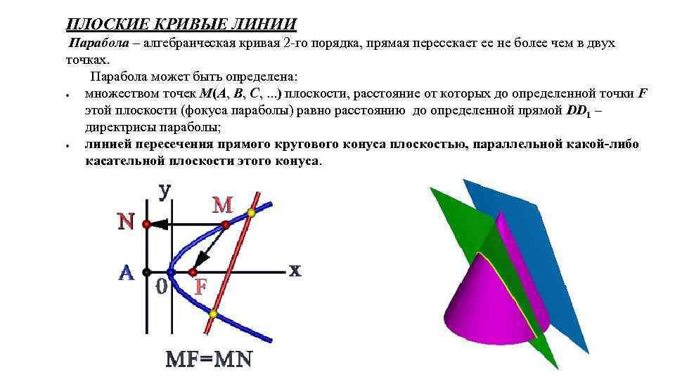 ПЛОСКИЕ КРИВЫЕ ЛИНИИ Парабола – алгебраическая кривая 2 -го порядка, прямая пересекает ее не