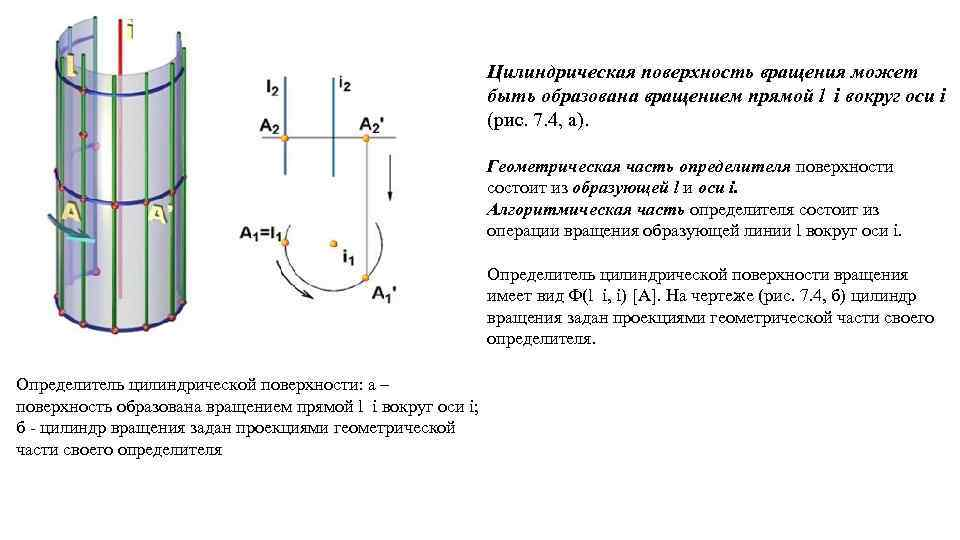 Цилиндрическая поверхность вращения может быть образована вращением прямой l i вокруг оси i (рис.