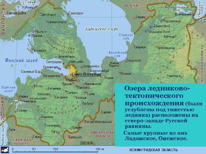 Озера ледниковотектонического происхождения (были углублены под тяжестью ледника) расположены на северо-западе Русской равнины. Самые