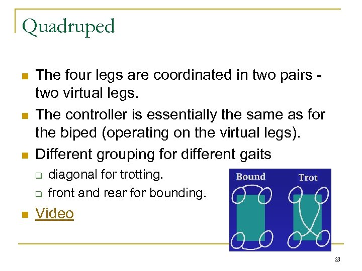 Quadruped n n n The four legs are coordinated in two pairs two virtual