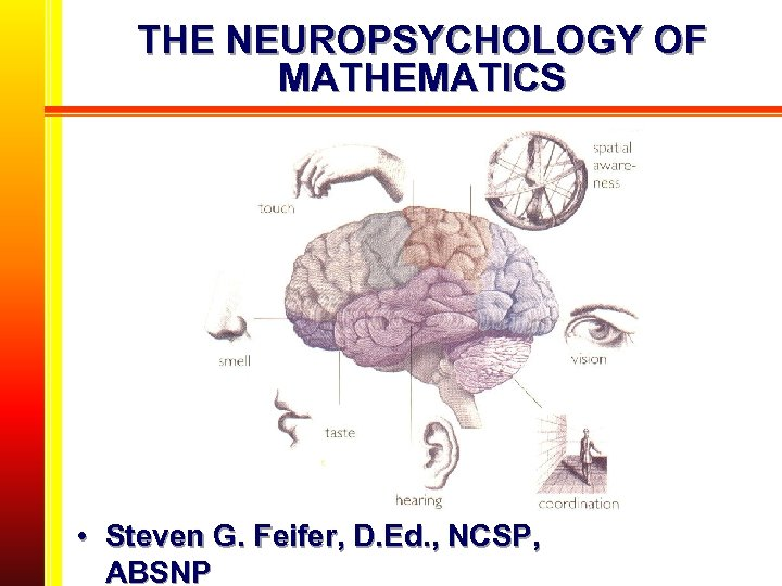 THE NEUROPSYCHOLOGY OF MATHEMATICS • Steven G. Feifer, D. Ed. , NCSP, ABSNP