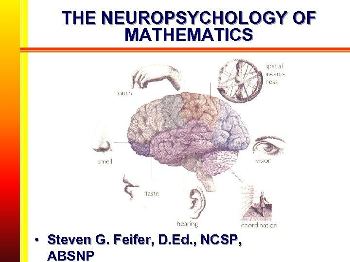 THE NEUROPSYCHOLOGY OF MATHEMATICS • Steven G. Feifer, D. Ed. , NCSP, ABSNP