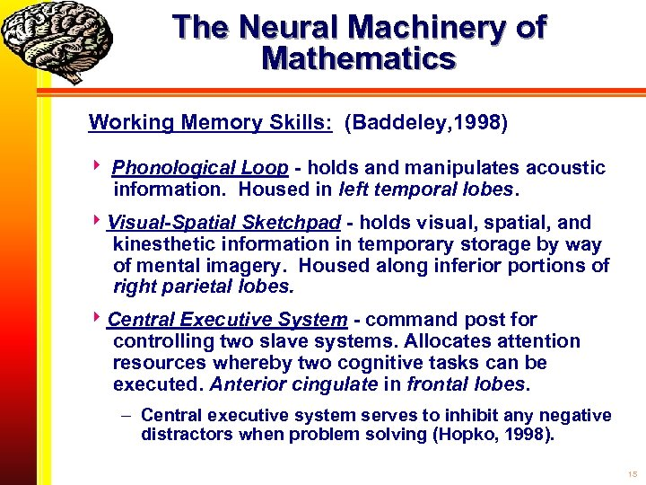 The Neural Machinery of Mathematics Working Memory Skills: (Baddeley, 1998) Phonological Loop - holds