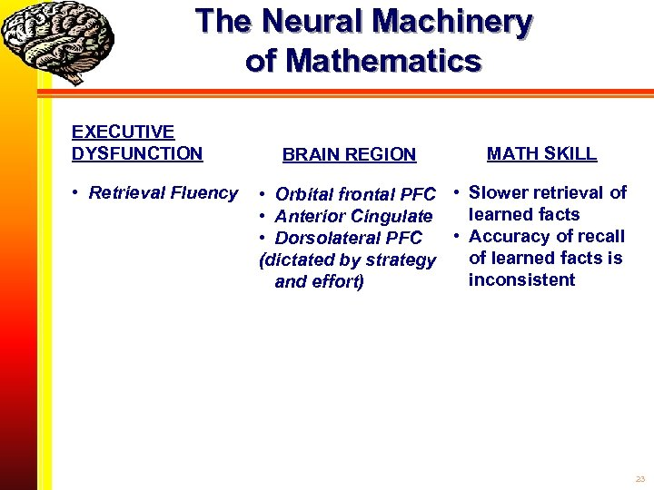 The Neural Machinery of Mathematics EXECUTIVE DYSFUNCTION • Retrieval Fluency BRAIN REGION MATH SKILL