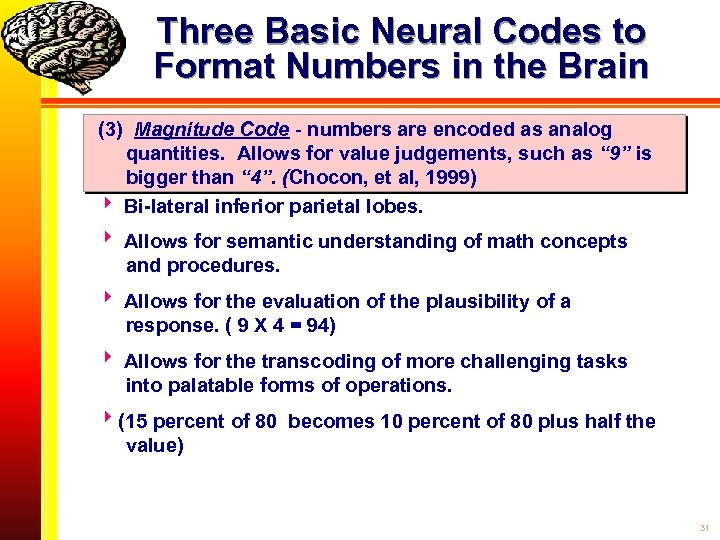 Three Basic Neural Codes to Format Numbers in the Brain (3) Magnitude Code -