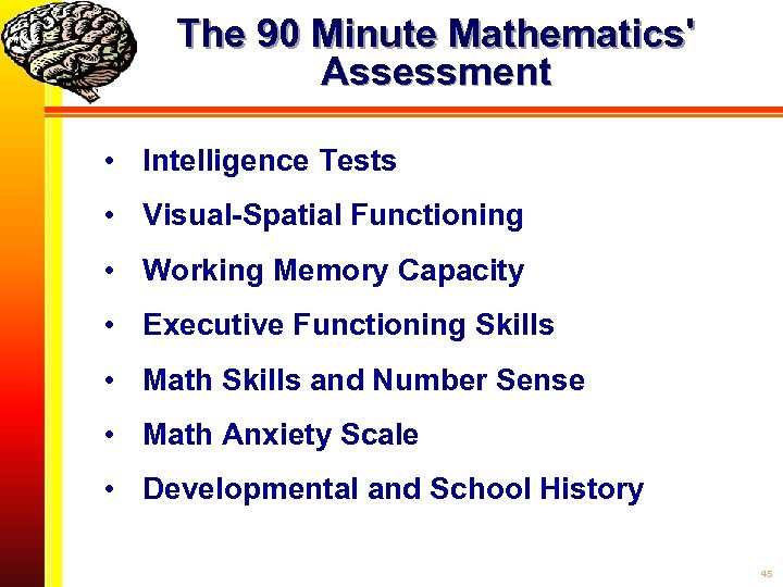 The 90 Minute Mathematics' Assessment • Intelligence Tests • Visual-Spatial Functioning • Working Memory