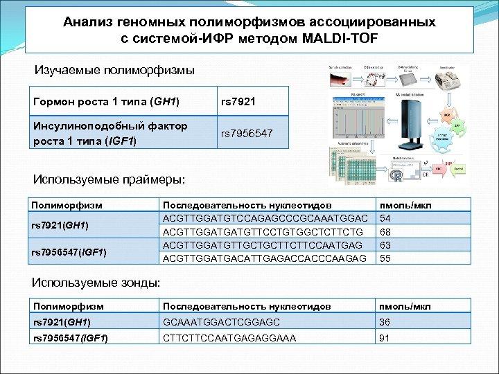 Анализ геномных полиморфизмов ассоциированных с системой-ИФР методом MALDI-TOF Изучаемые полиморфизмы Гормон роста 1 типа