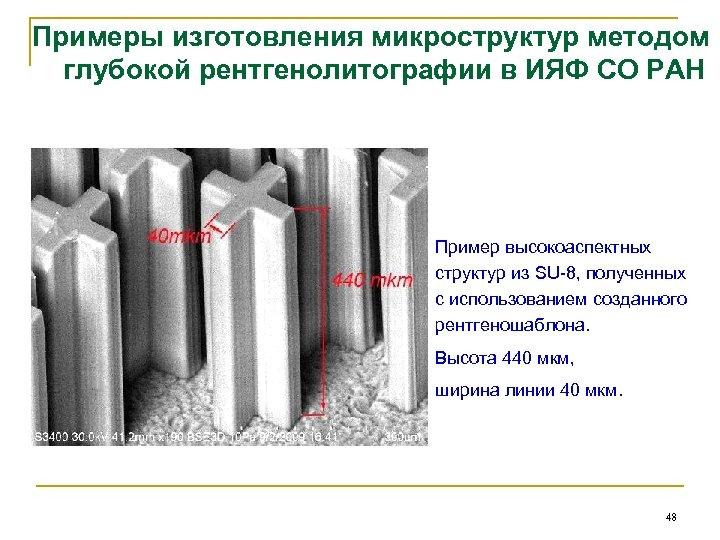 Примеры изготовления микроструктур методом глубокой рентгенолитографии в ИЯФ СО РАН Пример высокоаспектных структур из