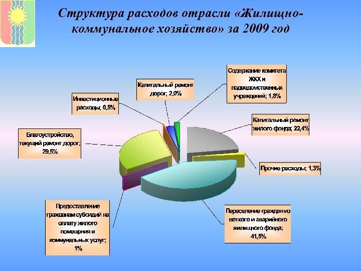 Структура расходов отрасли «Жилищнокоммунальное хозяйство» за 2009 год