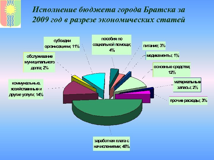 Исполнение бюджета города Братска за 2009 год в разрезе экономических статей