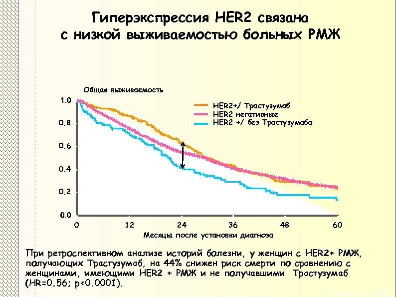 Гиперэкспрессия HER 2 связана с низкой выживаемостью больных РМЖ Общая выживаемость 1. 0 HER