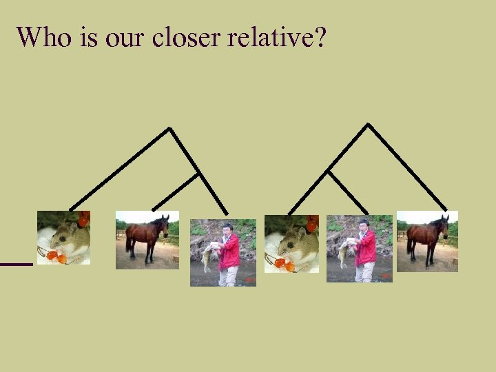 Who is our closer relative?